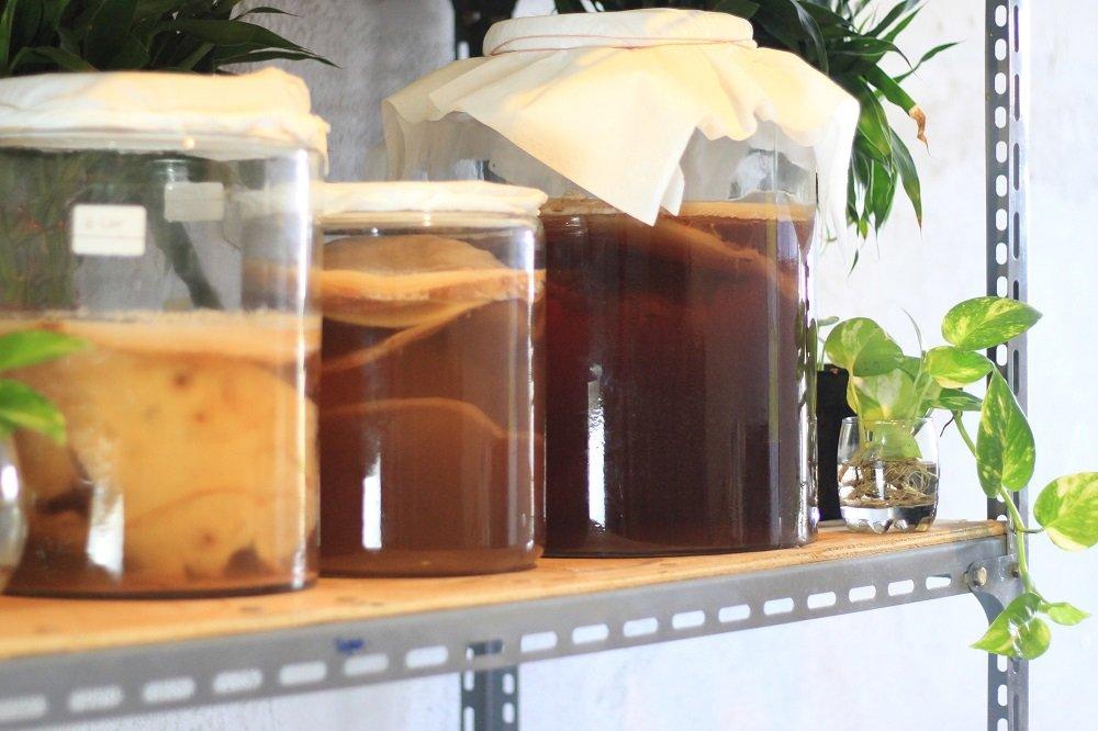 Tempat ideal untuk meletakan toples fermentasi